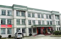 東莞麻湧鎮辦公樓地闆下沉基礎加固工程實例